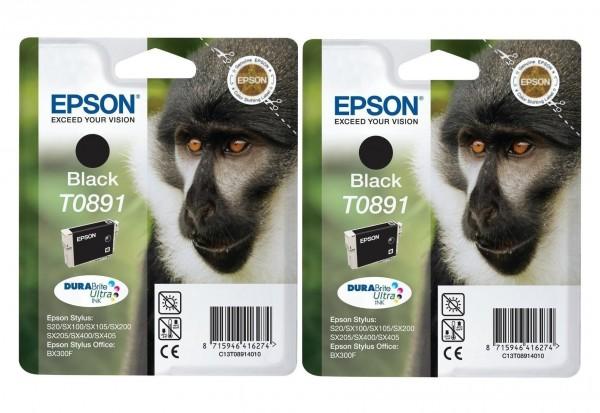 2x Original Epson Tinte T0891 Patronen Stylus Office BX300F S20 S21 SX100 SX105 SX110